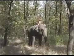 Königin der Elefanten