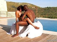 Kunjasa Z Egzotycznej Afryki
