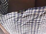 Upskirt blue panties