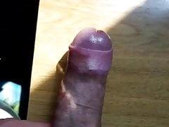 Cock | Porn-Update.com