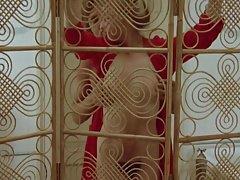 LAURA PREMICA NUDE (1981)