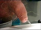 Tipitou's little soft uncut having a pee