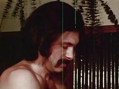 Vice contre vice (1971) 2 du 2