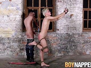 gay N137...