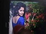 South Indian Mallu Actress Anupama Cock tribute 3