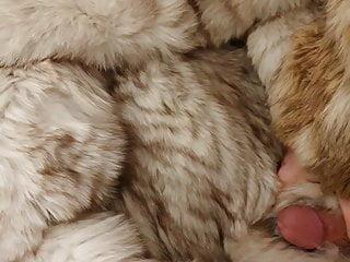 fox fur video1