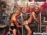 British bottom punk spreads ass for hard cock
